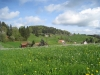 schöne Frühlingslandschaft bei Zübel