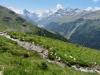 auf dem Höhenweg nach Zinal; Zinalrothorn 4221m, Besso  3667m  Obergabelhorn 4063m, Matterhorn 4478m, Pointe de Zinal 3789m, Dent Blanche 4357m, Garde de Bordon 3310m