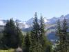 SIcht von Uf de Chessle 1813m;  Altels 3629m, Rinderhorn 3453m, Steghorn 3146m  Grossstrubel 3243m