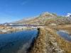 Grimselpass, Totesee; Hohhoren und Galehorn