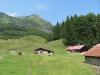 die Alp Schäri 1227m   mit Wilerhorn 2004m