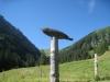 Emblem des Guggerwegs; Abhang der Bachflue, Sattelhorn