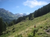 Alp Gure mit Gspaltenhorn