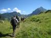 unterwegs zur Alp Cüematti; Wätterlatte, Renggpass, Höchst, Dreispitz