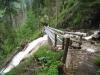Brücke über den Dündenbach