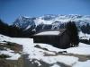 """Alp """"Alp""""  1515m: Canardhorn 2607m, Wisshorn 2668m, Lauizughorn 2469m"""