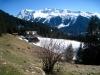 Alpenrösli: Lauizughorn 2469m, Gatschieferspitz 2676m, Pischahorn hi 2979m