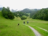 ein schöner Wiesenweg ab Höfji