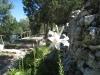 weisse Lilien im Garten