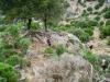 Abstieg vom Fanari