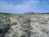 Dünen am  Sandstrand von Alyko