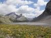 auf dem Lämmerenboden; Rinderhorn 3449m, Plattenhörner  2845m,  Majinghorn 3054m