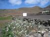 vom Mauern umgebenes Anbaugebiet