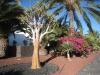 vor dem Hotel Seaside Jameos Playa