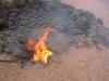 im Nationalpark Timanfaya; Feu entzündet sich