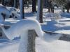 auf dem Winterwanderweg von der Biathlon Arena  aus