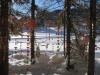 im Winter Wunderwald  Lenzerheide