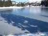 Tanne gespiegelt auf dem Eis des Heidsee