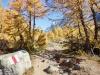 Herbstlandschaft im Lötschental