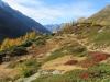 Herbstzauber im Lötschental; Niwen 2769m, Faldumpass,Faldumrothorn 2832m, Alplighorn, Restipass, Restirothorn 2969m