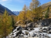 Herbstzauber im Lötschental; Anubach