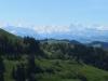 Wetterhorn 3701m, Lauteraarhorn 4042m, Schreckhorn 4078m, Finsteraarhorn 4274m,  Fiescherhörner, Eiger 3970m, Mönch 4178m, Jungfrau 4158m