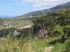 Blick auf das Dorf Estellencs