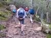 leichter Aufstieg im Walde