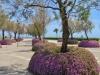 Parkanlage vor dem künstlichen See