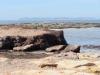 durch die Berge aus Neptungras; Posidonia oceanica