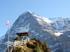 Eiger 3970m mit Gartenlaube des Hotels Grindelwaldblick