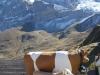 touristische kl. Scheidegg 2061m