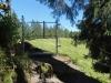 Waldweg am Grat; gegen  die Marbachegg