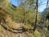 der Weg ins Tal hinein