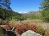 Blick auf Grosses Fusshorn 3626m, Rotstock 3701m, Geisshorn 3740m,Zenbächenhorn 3386m, Rothorn 3271m