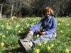 Marianne  in den Osterglocken