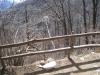 der Ponte Tibetano 270m lang