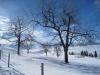 prächtige Winterlandschaft bei Engelstockweid