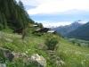 auf dem Gommer Höhenweg;  Mittagshorn 3015, Blashorn   2777m