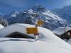 P. 1750m; Eiger 3970m, Mönch 4099m, Schwarzer Mönch 2648m, Jungfrau, 4158m,  davor  Schwarzer Mönch 2648m, Gletscherhorn 3983m, Aebeni Fluh