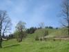 ein schöner Wanderweg nach Niederrickenbach