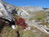 Ofen 2873m, Kl.Tschingelhorn 2846m, Gr. Tschingelhorn 2849m,  Pass dil Segnas 2627m
