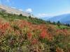 herbstliche  Landschaft mit Flimserstein
