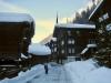 tief verschneites Niederwald