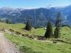 Abstieg zum Brunnenberg