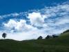 die Alphütten bei Horn