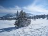 Winterstimmung auf der Prodalp 1576m
