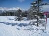Winterstimmung auf der Prodalp