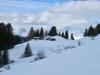 Winterstimmung  oberhalb Parpan