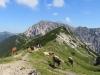 auf dem Sareiserjoch; Blick zurück auf die Bergstation und  den Gamsgrat